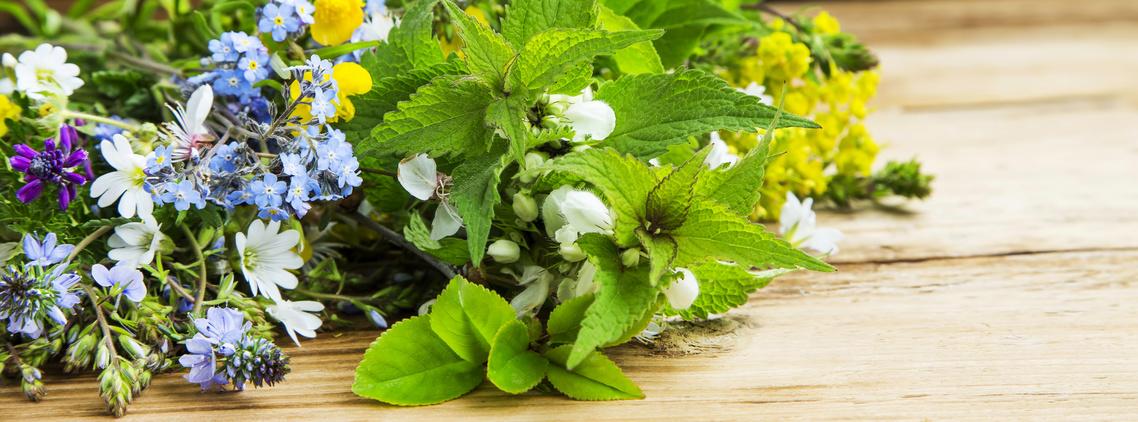 herbes elixir du suédois
