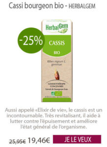 cassis bourgeon Herbalgem